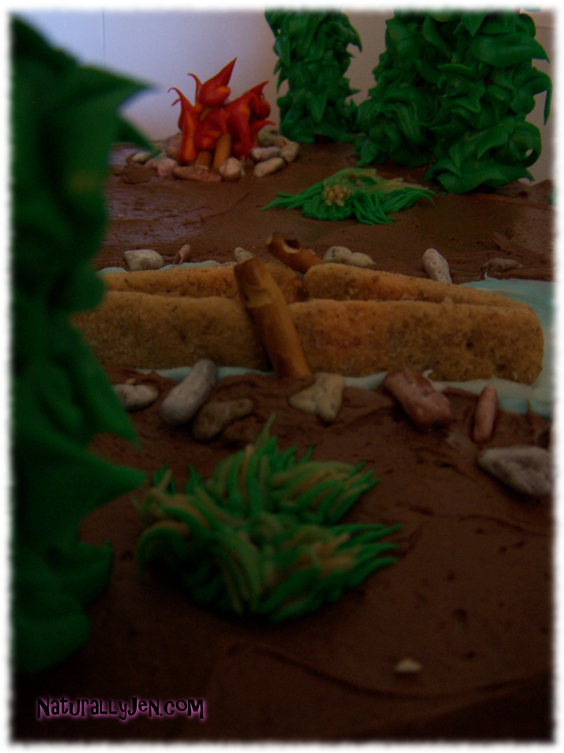 Themed Birthday Cakes with edible Canoe, Edible Fire and Edible Trees